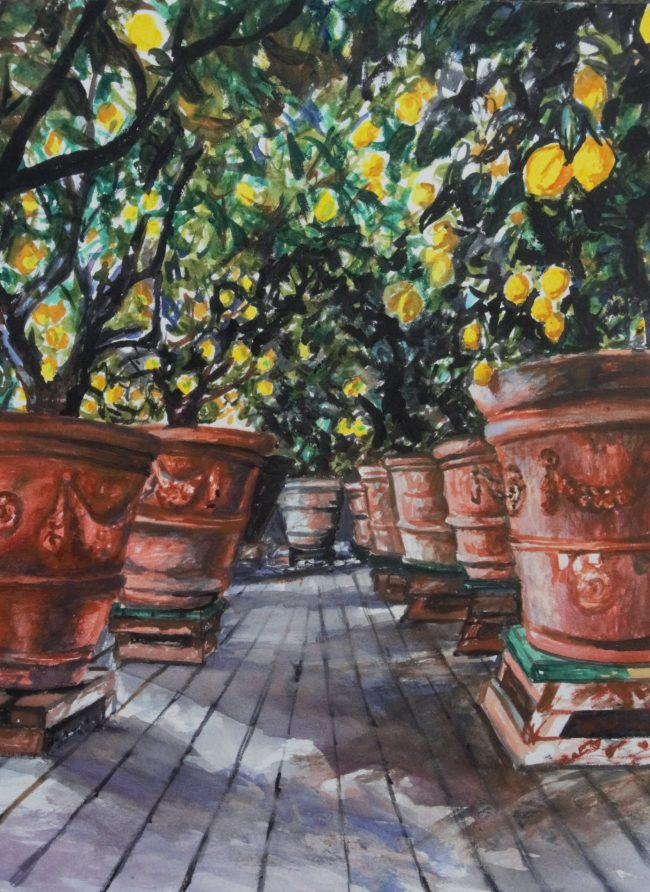 14.Gameraia_s lemon house _ _ 23X30cm _ watercolor on paper _ 2019
