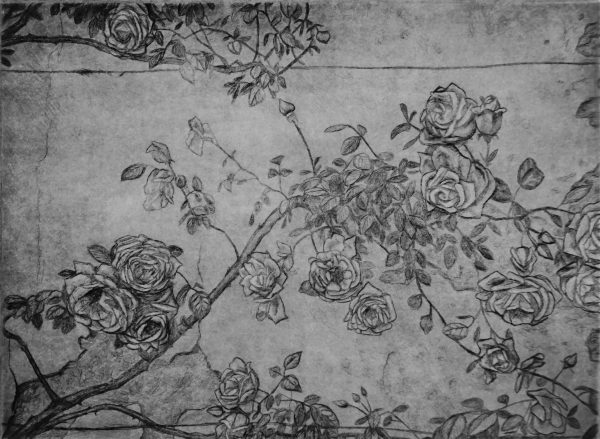 23.Petraia roses _ 20X15cm _ engraving _ 2014